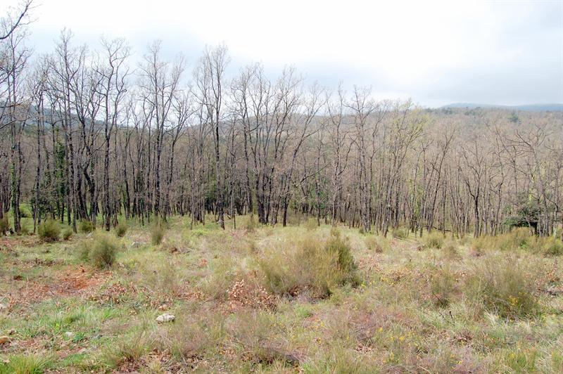 Vendita terreno Mons 160000€ - Fotografia 3