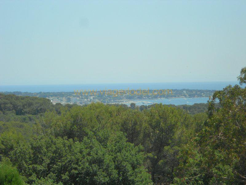 Life annuity apartment Antibes 74 000€ - Picture 3