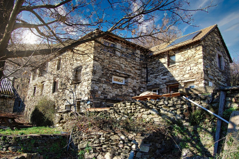 Vente maison / villa Joyeuse 350000€ - Photo 1