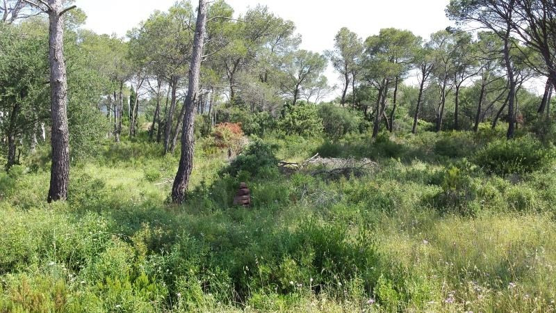 Sale site Le cannet des maures 160 000€ - Picture 1