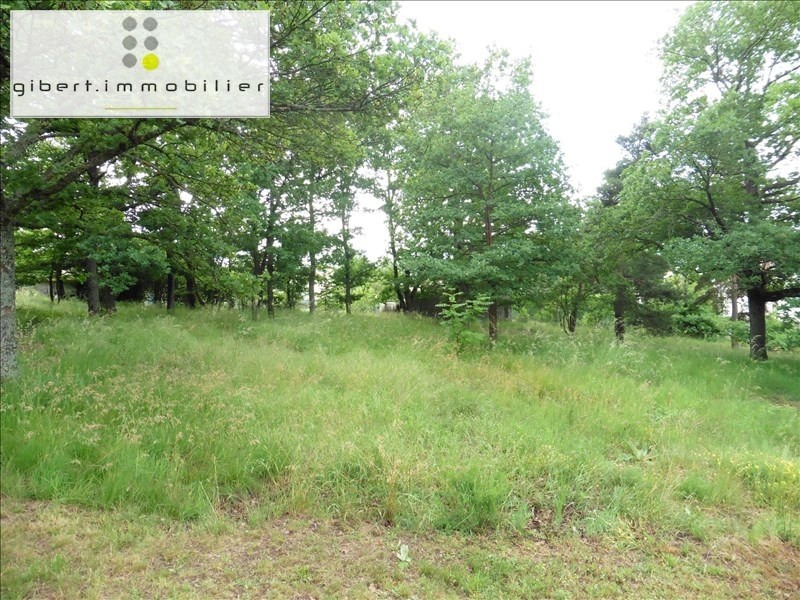 Vente terrain Blavozy 38600€ - Photo 3