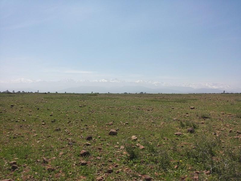 Vente terrain Marrakech 393460€ - Photo 3