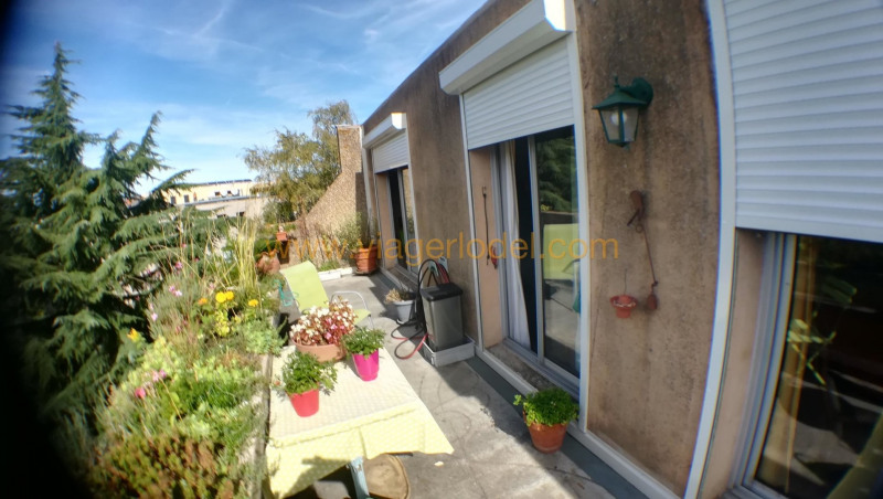 Viager appartement Toulouse 52500€ - Photo 2