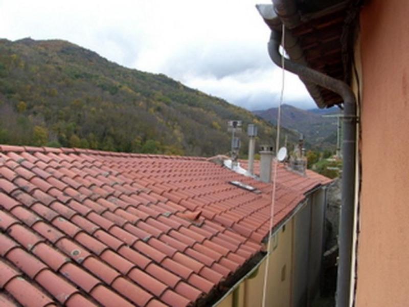 Vente maison / villa Prats de mollo la preste 69900€ - Photo 10