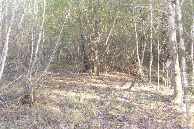 Vente terrain Ivoy le pre 30000€ - Photo 4