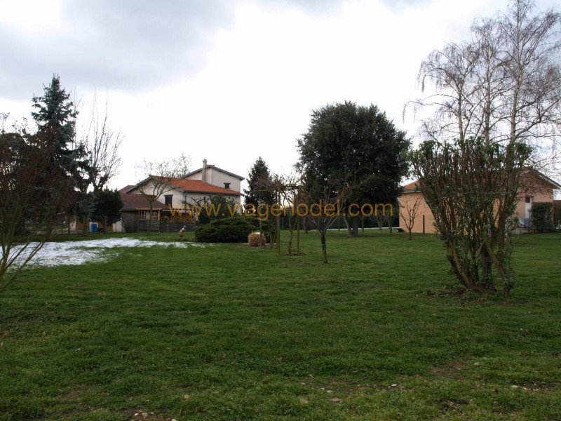 Viager maison / villa Pact 70 000€ - Photo 3