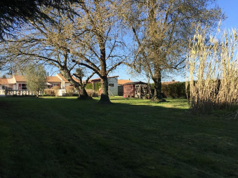Sale house / villa Saint-sulpice-de-cognac 232760€ - Picture 3