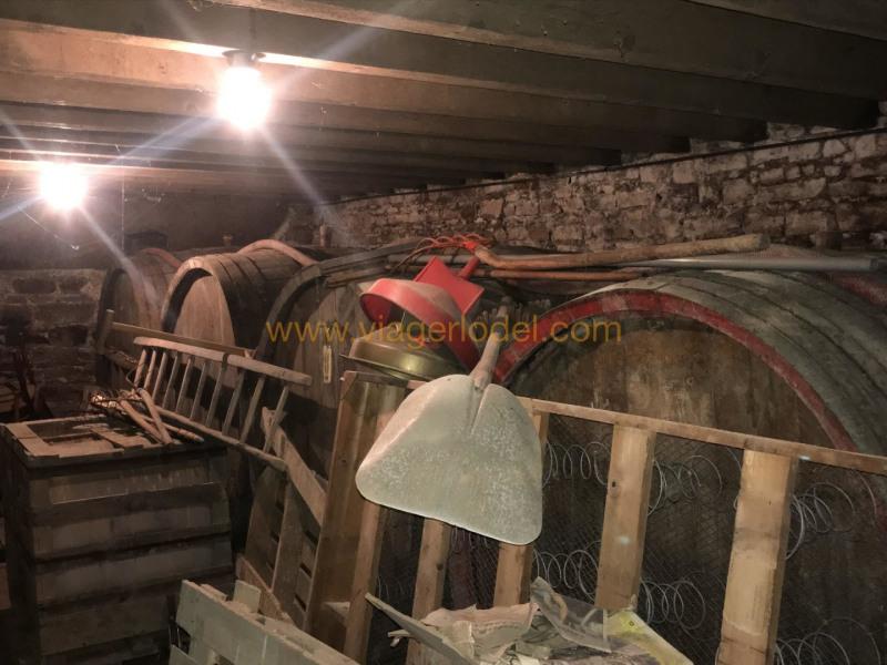 Verkauf auf rentenbasis haus Belleville-en-beaujolais 68000€ - Fotografie 9