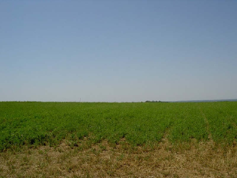 Vente terrain Villemur sur tarn 65000€ - Photo 1