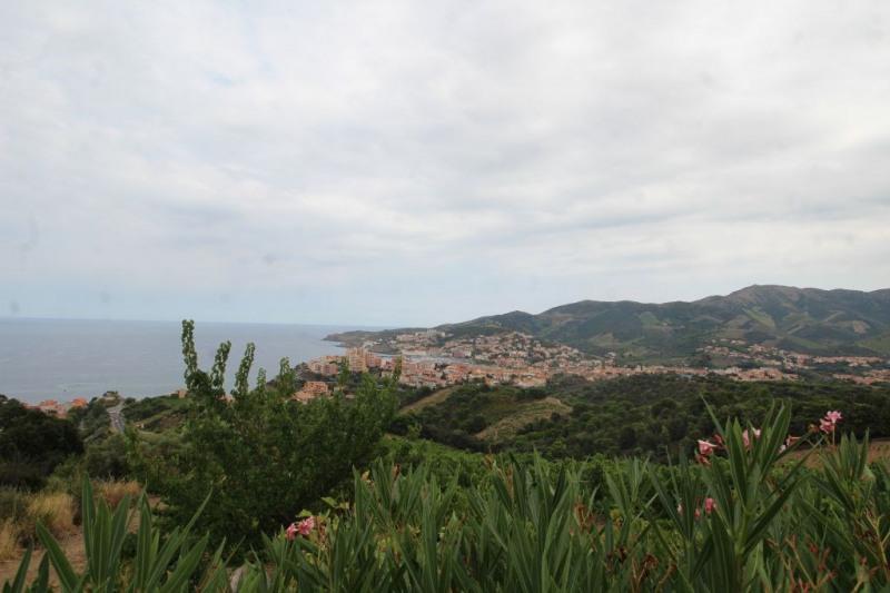 Vente maison / villa Banyuls sur mer 110000€ - Photo 9