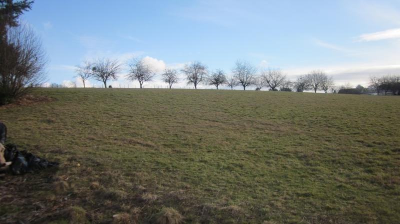 Vente terrain St leonard de noblat 109000€ - Photo 2