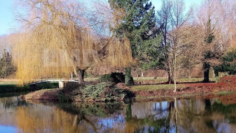 Vente terrain Mezieres-sous-lavardin 50000€ - Photo 4
