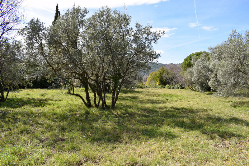 Vente maison / villa Seillans 296 000€ - Photo 3