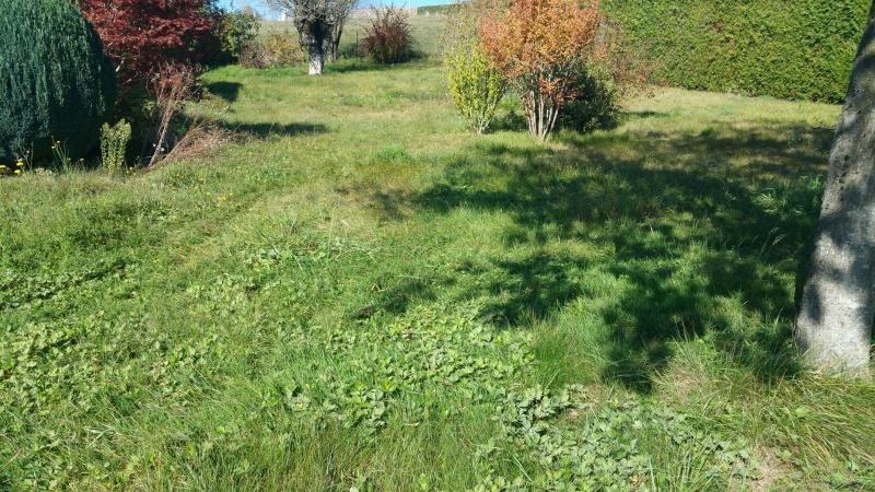 Sale site Nonglard 220 500€ - Picture 3