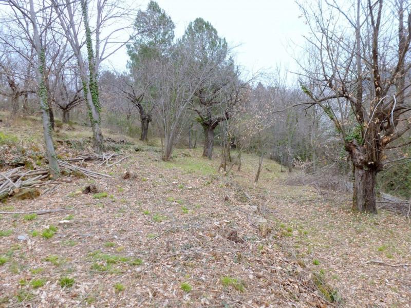 Vente terrain Aubenas 34000€ - Photo 9