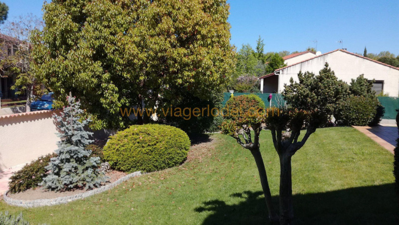Life annuity house / villa Tournefeuille 85 000€ - Picture 14