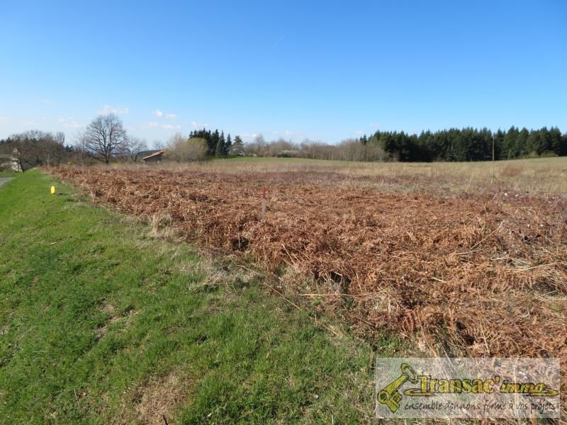 Sale site Chateldon 36 300€ - Picture 2