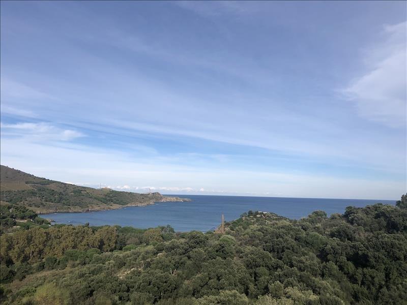 Vente maison / villa Port vendres 45000€ - Photo 1