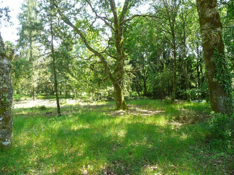 Sale site Ygos st saturnin 65 200€ - Picture 1