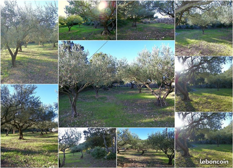 Verkoop  stukken grond Carnoules 37100€ - Foto 1