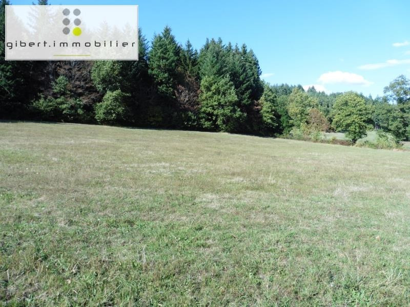 Sale site Le puy en velay 54 000€ - Picture 4