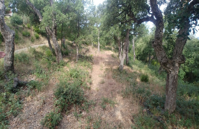 Vente terrain Montesquieu des alberes 155 520€ - Photo 2