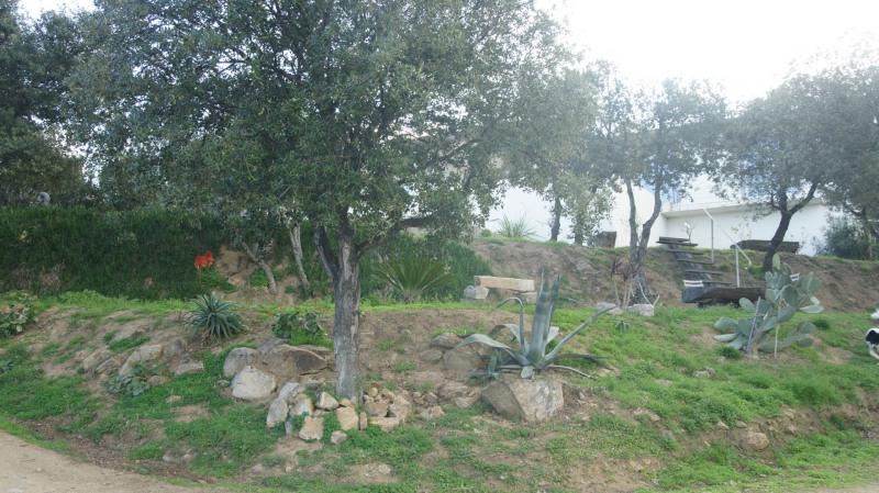 Vente de prestige maison / villa Monticello 1180000€ - Photo 16