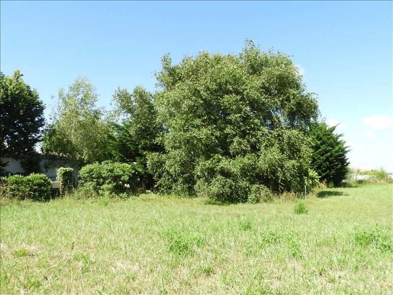 Vente terrain St georges d oleron 88 000€ - Photo 2