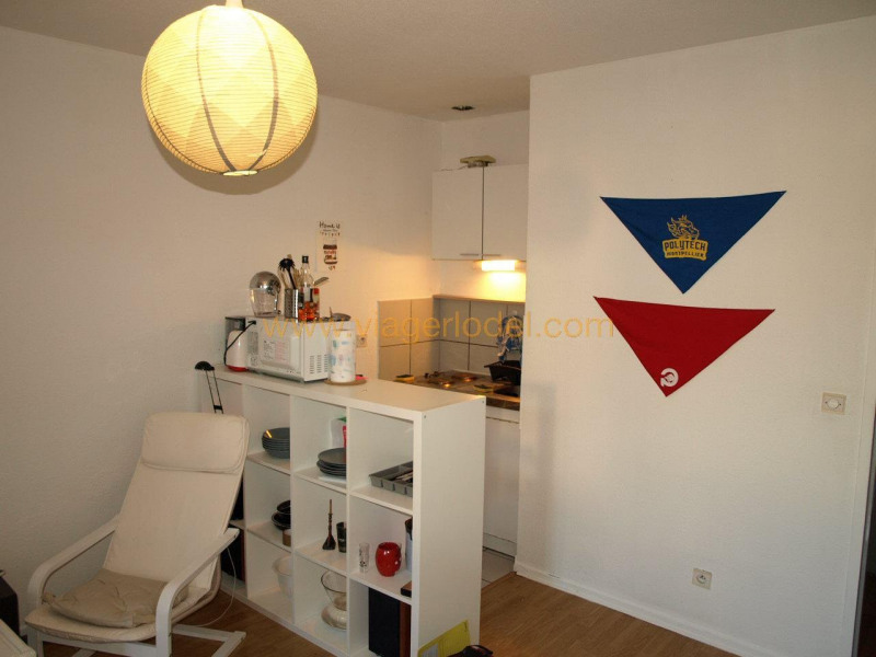 Viager appartement Chambéry 40000€ - Photo 2