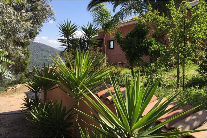 Vitalicio  casa Ajaccio 225000€ - Fotografía 15