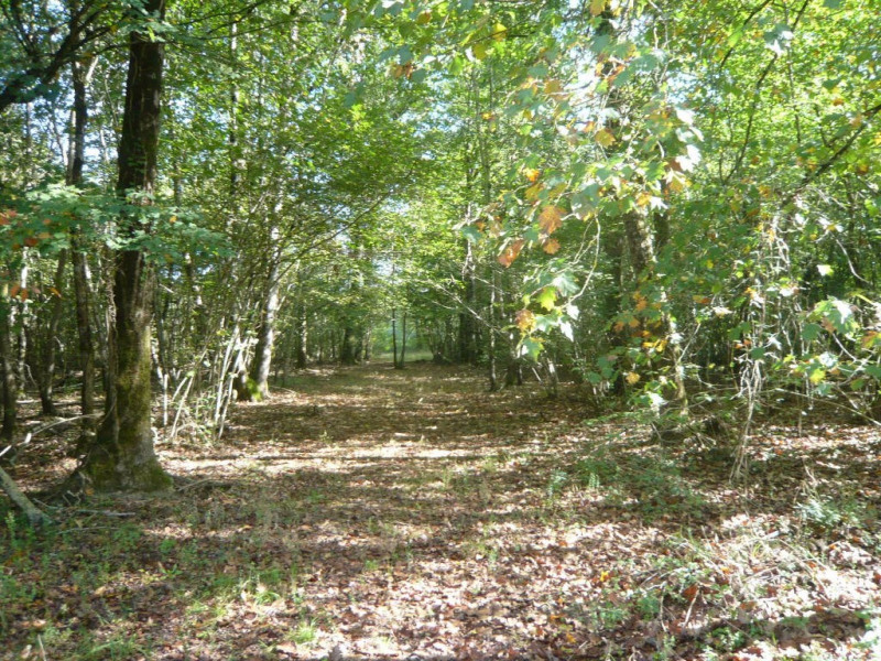 Vente terrain Saint leger 34350€ - Photo 1