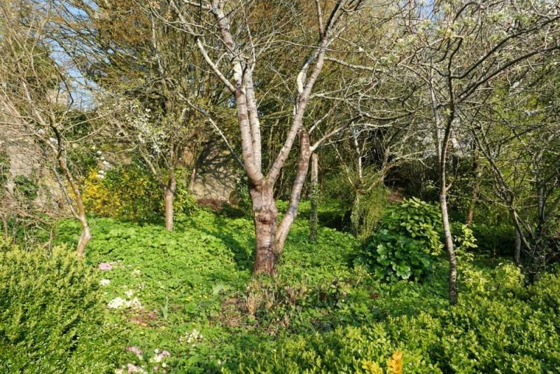 Vente terrain Coutances 45000€ - Photo 5
