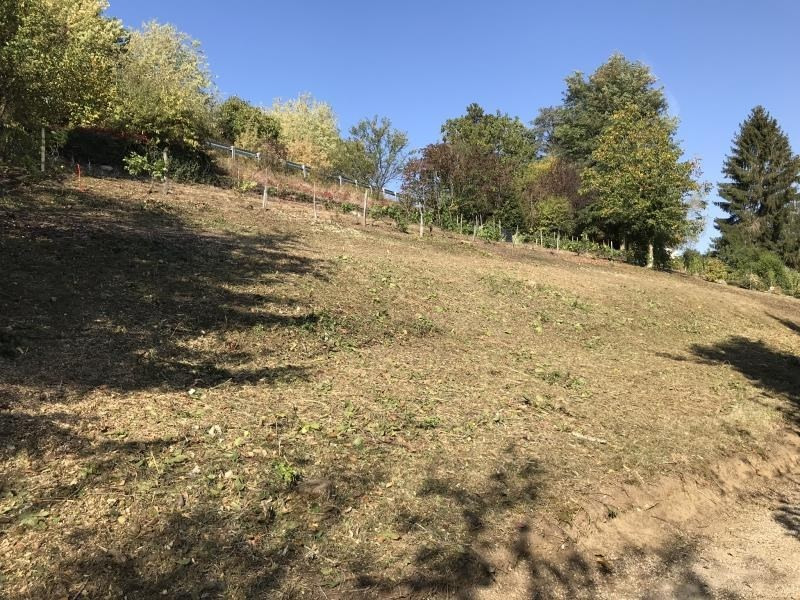 Vente terrain Conjux 160000€ - Photo 3