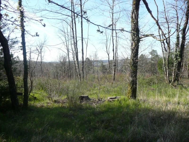 Vente terrain Auriac du perigord 30000€ - Photo 1