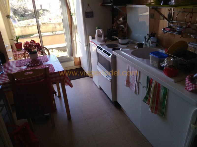 Viager appartement Toulouse 62 500€ - Photo 4