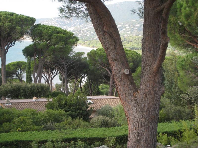 Location vacances maison / villa Cavalaire 2800€ - Photo 32