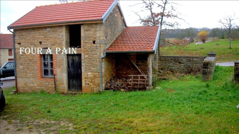 Vente maison / villa Selongey 45000€ - Photo 3