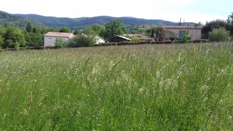Sale site Labruguiere 60 000€ - Picture 3
