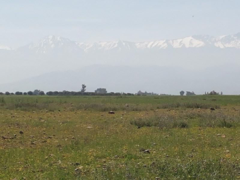 Vente terrain Marrakech 393460€ - Photo 6