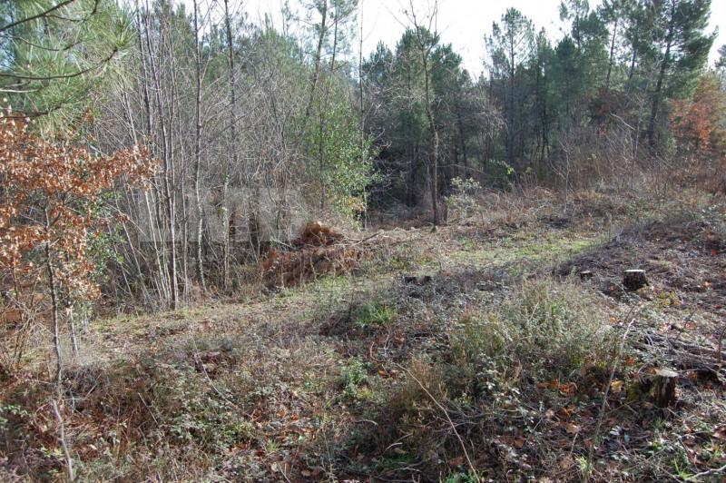 Vente terrain Joyeuse 86000€ - Photo 4