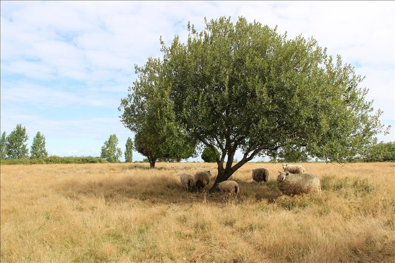 Vente terrain Corsept 39000€ - Photo 3