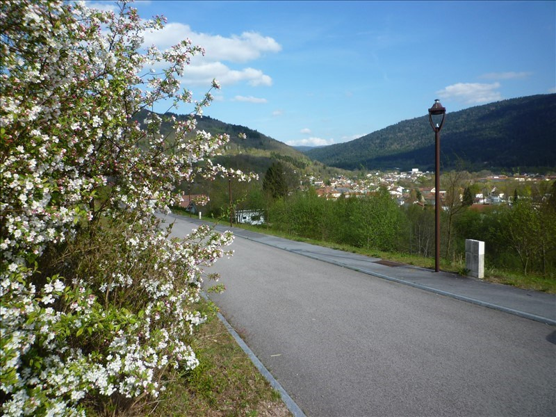 Sale site Saulxures sur moselotte 26472€ - Picture 3