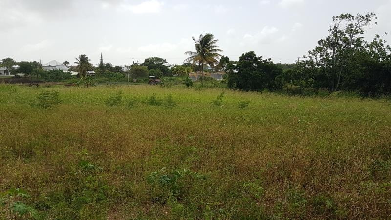 Vente terrain St francois 235 000€ - Photo 2