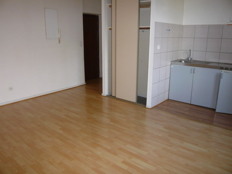 Location appartement Cremieu 495€ CC - Photo 2