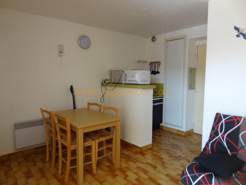 Viager appartement Agde 38 000€ - Photo 4