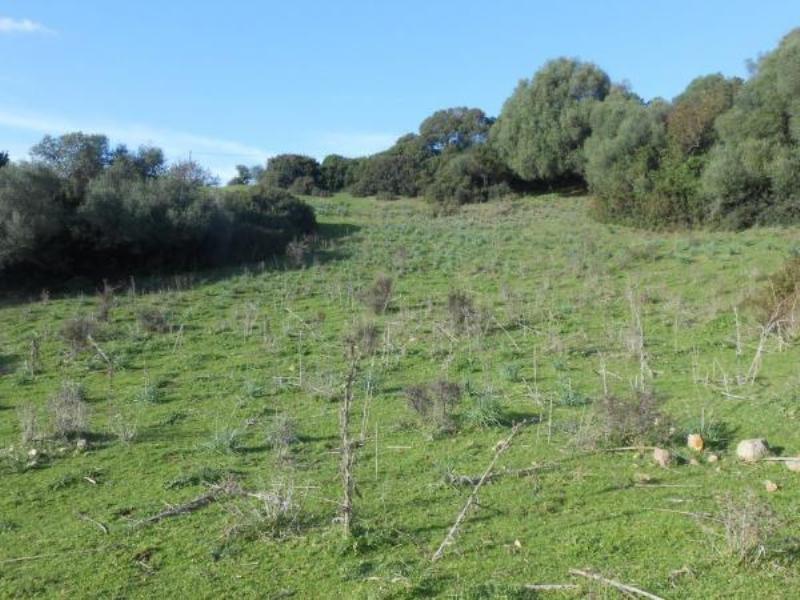 Vente terrain Sollacaro 575000€ - Photo 9