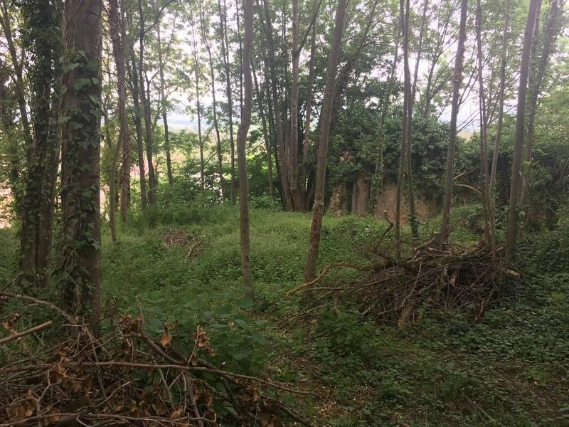 Vente terrain La baume-d'hostun 75000€ - Photo 2