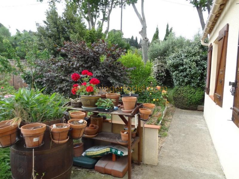 Vitalicio  casa Boutenac 40400€ - Fotografía 3