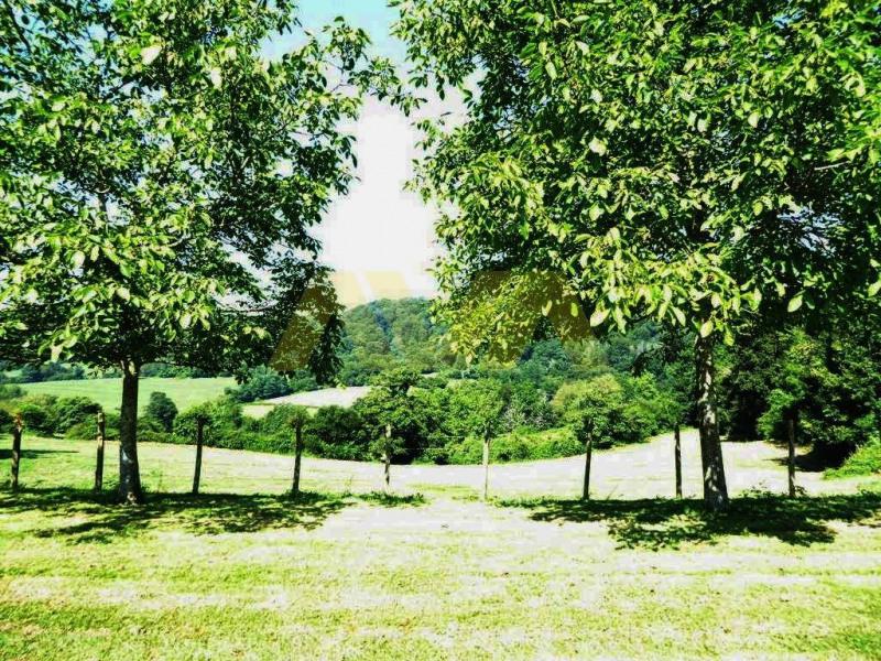 Vente maison / villa Navarrenx 367000€ - Photo 5
