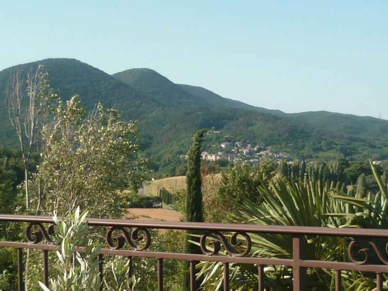 Location maison / villa Cliousclat 1240€ CC - Photo 3